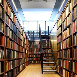Библиотеки Дубовки