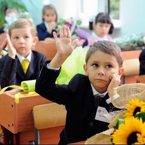 Школы Дубовки